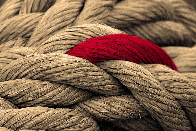 Het belang van de rode draad